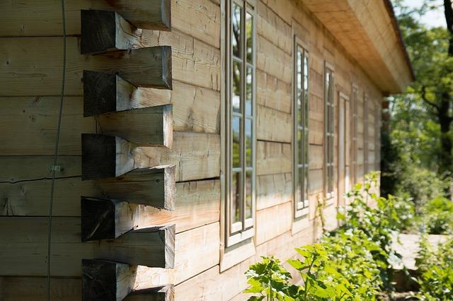 Drewniany dom - jakiego drewna użyć?