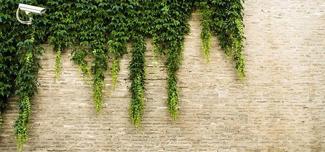 Sposób na pękające ściany w domu